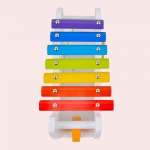 Multicolour shape sorter xylophone for kids