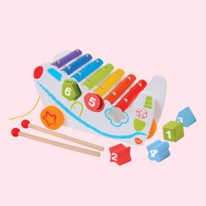 Pull Along Shape Sorter Xylophone Toys Set