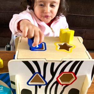 Kid Playing Wooden Zebra Set