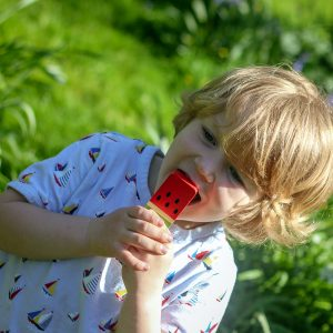 Wooden Ice Cream for Young Chilndren