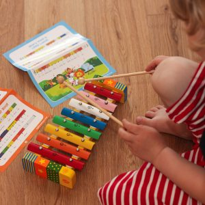 Kid Playing Xylophone Musical Toy