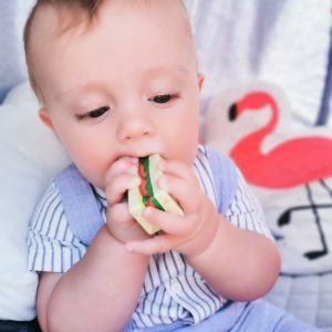 Wooden Sandwich Toy for Your Little One