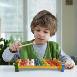Little Boy Playing Xylophone Musical Toy